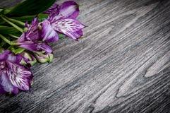 Λουλούδια στην ξύλινη ανασκόπηση Ελεύθερου χώρου για το κείμενο, κινηματογράφηση σε πρώτο πλάνο Στοκ Εικόνες