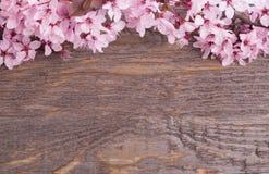 Λουλούδια στην ξύλινη ανασκόπηση Στοκ εικόνα με δικαίωμα ελεύθερης χρήσης