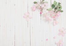 Λουλούδια στην ξύλινη ανασκόπηση Στοκ Εικόνες