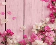 Λουλούδια στην ξύλινη ανασκόπηση Στοκ Εικόνα