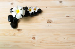 Λουλούδια στην ομάδα μαύρης πέτρας Στοκ εικόνα με δικαίωμα ελεύθερης χρήσης