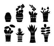 Λουλούδια στη σκιαγραφία δοχείων Στοκ εικόνα με δικαίωμα ελεύθερης χρήσης