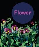 Λουλούδια στη σκοτεινή νύχτα υποβάθρου Στοκ Φωτογραφίες