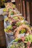Λουλούδια στον κάδο Στοκ Φωτογραφία