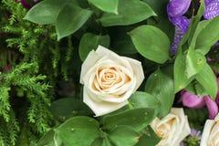 Λουλούδια στον κήπο Στοκ εικόνα με δικαίωμα ελεύθερης χρήσης