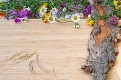 Λουλούδια στον παλαιό φλοιό, αγροτικό Στοκ Φωτογραφία