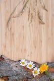 Λουλούδια στον παλαιό φλοιό, αγροτικό Στοκ εικόνα με δικαίωμα ελεύθερης χρήσης