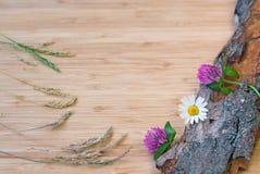 Λουλούδια στον παλαιό φλοιό, αγροτικό Στοκ εικόνες με δικαίωμα ελεύθερης χρήσης