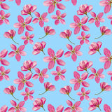 Λουλούδια της Apple Άνευ ραφής σύσταση σχεδίων των λουλουδιών Floral backg διανυσματική απεικόνιση