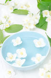 Λουλούδια της Jasmine σε ένα κύπελλο για τη SPA και aromatherapy, κάθετος Στοκ Φωτογραφίες