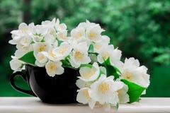 Λουλούδια της Jasmine σε ένα μαύρο φλυτζάνι Στοκ Φωτογραφία