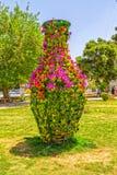 Λουλούδια της Shiraz στο πάρκο Στοκ Φωτογραφίες