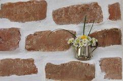Λουλούδια τουβλότοιχος και μαργαριτών Στοκ Φωτογραφίες