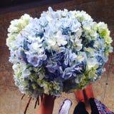 Λουλούδια του Μπαλί δώρων λουλουδιών Στοκ φωτογραφίες με δικαίωμα ελεύθερης χρήσης
