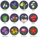 Λουλούδια των μηνών Στοκ φωτογραφία με δικαίωμα ελεύθερης χρήσης