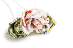 Λουλούδια των τραπεζογραμματίων Στοκ Εικόνες