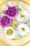 Λουλούδια 2 Στοκ Εικόνες