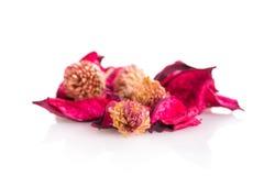 Λουλούδια Artificials Στοκ φωτογραφία με δικαίωμα ελεύθερης χρήσης