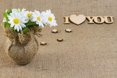 Λουλούδια Chamomile σε ένα βάζο Στοκ Φωτογραφίες