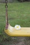 Λουλούδια Champa ή Plumeria Στοκ εικόνα με δικαίωμα ελεύθερης χρήσης