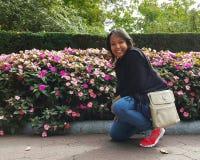 Λουλούδια Colorfull στοκ φωτογραφία