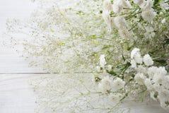 Λουλούδια Gypsophila στο ξύλινο υπόβαθρο Στοκ Εικόνες