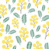Λουλούδια mimosa άνοιξη, άνευ ραφής διανυσματικό σχέδιο Στοκ εικόνες με δικαίωμα ελεύθερης χρήσης