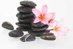 Λουλούδια Plumeria και μαύρες πέτρες Στοκ Εικόνες