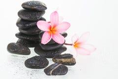 Λουλούδια Plumeria και μαύρες πέτρες Στοκ φωτογραφίες με δικαίωμα ελεύθερης χρήσης
