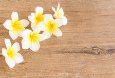 Λουλούδια Plumeria σε ένα ξύλινο υπόβαθρο Στοκ Εικόνα