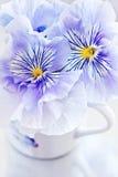 Λουλούδια Viola Στοκ φωτογραφία με δικαίωμα ελεύθερης χρήσης
