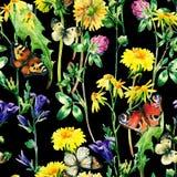 Λουλούδια watercolor λιβαδιών και άνευ ραφής σχέδιο πεταλούδων Στοκ Φωτογραφίες