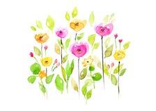 Λουλούδια Watercolor στο άσπρο υπόβαθρο διανυσματική απεικόνιση