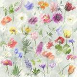 Λουλούδια Watercolor Στοκ φωτογραφία με δικαίωμα ελεύθερης χρήσης