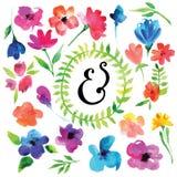 Λουλούδια Watercolor Στοκ Φωτογραφίες