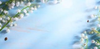 Λουλούδι άνοιξη κοιλάδων κρίνων τέχνης στο μπλε υπόβαθρο