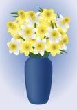 Λουλούδι άνοιξη - narcissuses Στοκ φωτογραφία με δικαίωμα ελεύθερης χρήσης