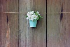 Λουλούδι δέντρων της Apple σε έναν κάδο σε ένα ξύλινο υπόβαθρο Στοκ Εικόνες