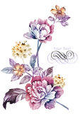 Λουλούδι απεικόνισης Watercolor στο απλό υπόβαθρο ελεύθερη απεικόνιση δικαιώματος