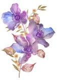 Λουλούδι απεικόνισης Watercolor στο απλό υπόβαθρο στοκ φωτογραφία με δικαίωμα ελεύθερης χρήσης