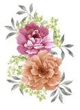 Λουλούδι απεικόνισης Watercolor Στοκ εικόνα με δικαίωμα ελεύθερης χρήσης