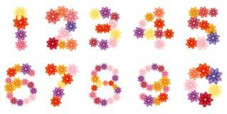 Λουλούδι αριθμών διανυσματική απεικόνιση