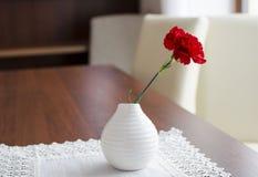 Λουλούδι γαρίφαλων Στοκ Εικόνα