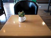 Λουλούδι κάκτων στον ξύλινο πίνακα Στοκ Εικόνες