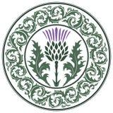 Λουλούδι και διακόσμηση κάρδων γύρω από τον κάρδο φύλλων Το σύμβολο της Σκωτίας διανυσματική απεικόνιση