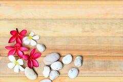 Λουλούδι και πέτρα Plumeria στο ξύλινο πιάτο Στοκ Εικόνες