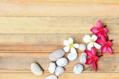 Λουλούδι και πέτρα Plumeria στο ξύλινο πιάτο Στοκ Εικόνα