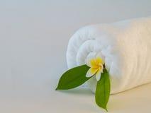 Λουλούδι και φύλλο Plumeria στη διπλωμένη άσπρη πετσέτα Στοκ Φωτογραφίες