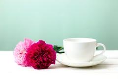 Λουλούδι και φλυτζάνι γαρίφαλων Στοκ Εικόνες