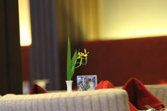 Λουλούδι και δωμάτια Στοκ Φωτογραφία